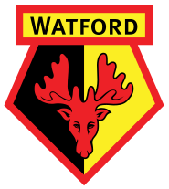 Watford last won a trophy